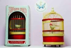 Cage à oiseau siffleur