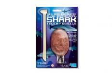Kit dent de requin