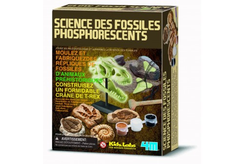 Kit Science des fossiles phosphorescents