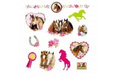 Tatouages Amis des chevaux