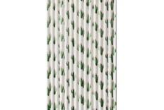 16 pailles Cactus
