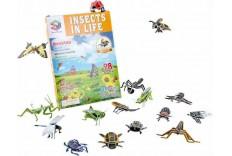 Insectes 3D à construire