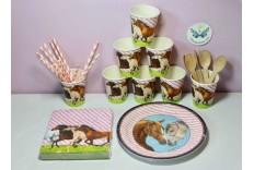 Kit anniversaire Amis des chevaux