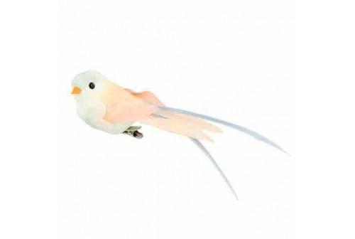 6 Oiseaux Pastel sur pince