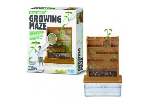 Kit labyrinthe de croissance