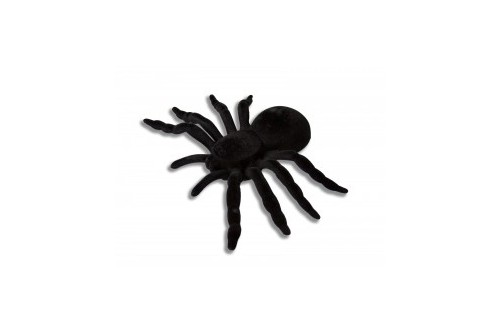 Araignée XL